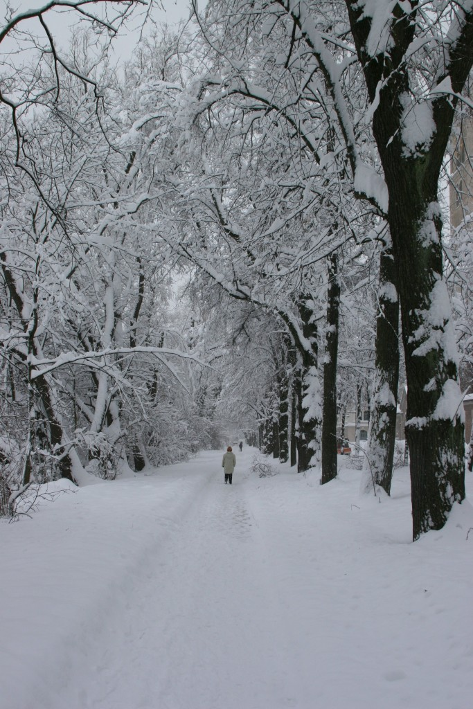 Path by the Isar, with snow